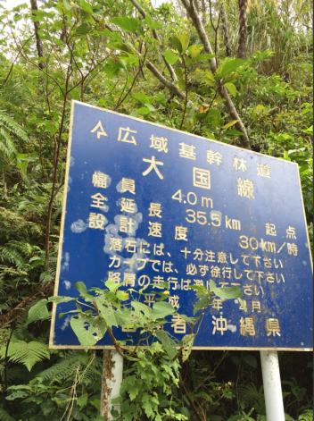 大国林道はいりまーす!!